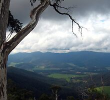 View from Mount Buffalo by Cheryl Parkes