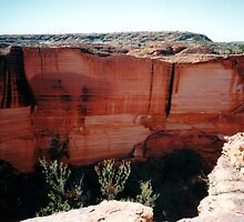 Cliff Face, Kings Canyon by Cheryl Parkes
