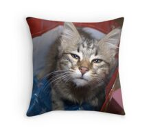 The nicest surprise Throw Pillow