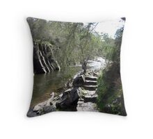 Bright Gorge Throw Pillow