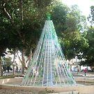 Eco Christmas Tree by Joseph Barbara