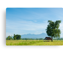 View Across the Paddy Fields Canvas Print