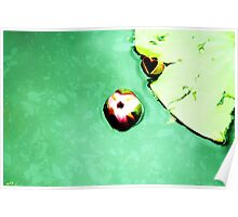 Lily of love  Poster