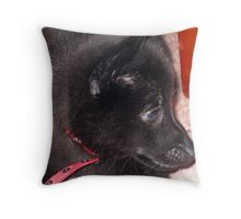 Puppy Jet Throw Pillow