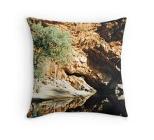 Ormiston Throw Pillow