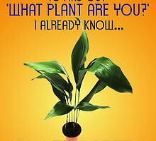 'WHAT PLANT ARE YOU?' (FOR THOSE WITH ASPERGER'S SYNDROME) by DilettantO