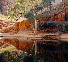 Ormiston Gorge by Cheryl Parkes