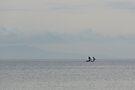 Fishing Boats by Werner Padarin