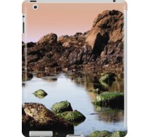 Our planet..welcome iPad Case/Skin