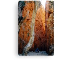 Standley Chasm Canvas Print
