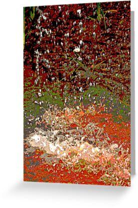 Earth Colours by janewiebenga