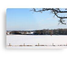 Winter wonderland Metal Print