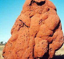 Outback Termite Mound by Cheryl Parkes