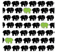 3 Little Elephants - Lime Green Photographic Print