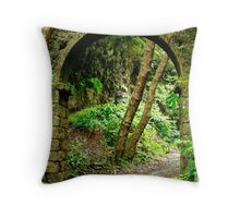 Old arch Throw Pillow