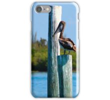 Pelican at The Inlet Ft. Pierce, Florida iPhone Case/Skin