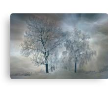 Winter's magic Canvas Print