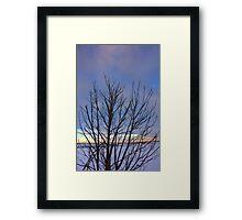 Trees At Dusk I Framed Print