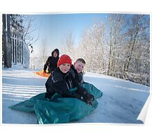 Snow urchins Poster