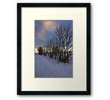 Trees At Dusk II Framed Print