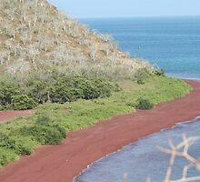 Red Beach on Rabida by Laurel Talabere