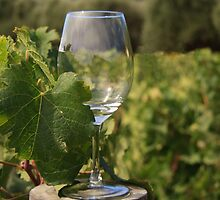 Wine Glass by Sue Leonard