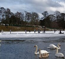Skaters on Inverleith Pond - Edinburgh by Chris Clark