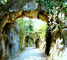 welcome to paradise 120..sintra portugal.. by Almeida Coval