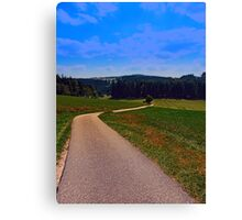 Yet another boring hiking trail picture   landscape photography Canvas Print