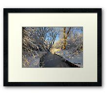 Winter Shine Framed Print