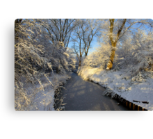 Winter Shine Canvas Print
