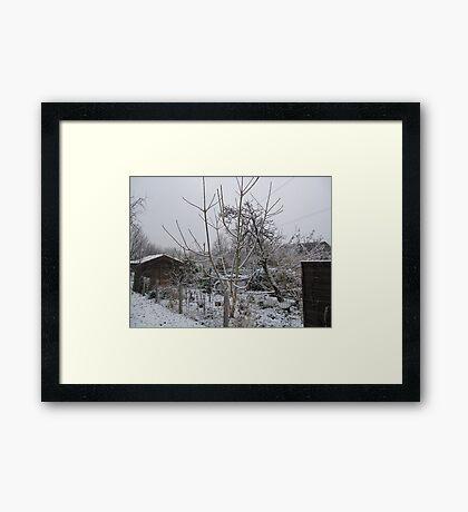 Cork Snow Framed Print