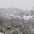 Cork Winter by Che Dean