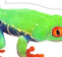 Red eyed tree frog Costa Rica Sticker