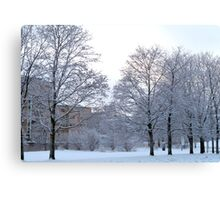 Wintery Suburbia Canvas Print