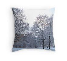 Wintery Suburbia Throw Pillow
