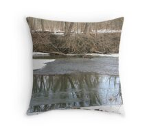 Icy Stream Throw Pillow