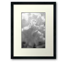 Dreamy creamscape Framed Print