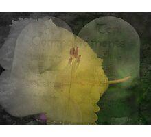 Ten Commandments Focus Photographic Print