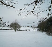 December Snow over the Northampton Countryside by BeauxButtons