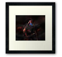 Lone Trooper Framed Print