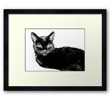 COLLABORATION OF TINA  Framed Print
