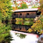 Waterloo Covered Bridge by George's Photography