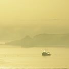 Morning mist, Cork Harbour by lukasdf