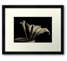Canned Callas Framed Print