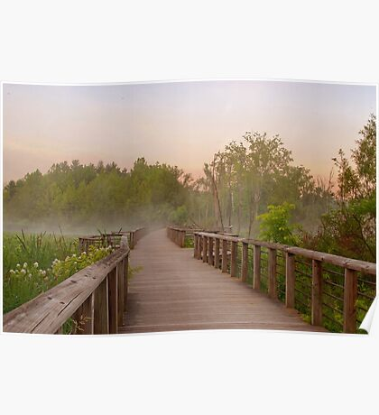 Misty Sunrise at Beaver Marsh Poster