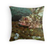 Pretty  Rockfish  Throw Pillow