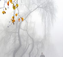Morning Stroll by Igor Zenin
