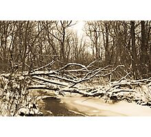 Windemere Winter Morning Photographic Print