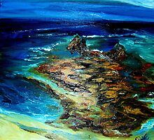 Pfeiffer Beach Tide Pool by Barbara Sparhawk